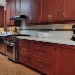 Bloor West Kitchen Design