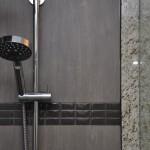Pengelley Bathroom Shower Flash