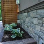 Exterior Home Plants