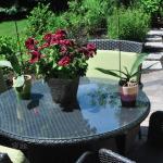 Home Additions Garden Renovation
